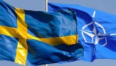 Could 2016 be the year Sweden makes significant progress towards membership of NATO?